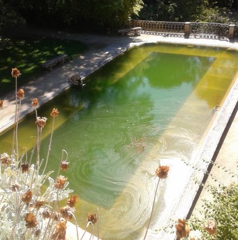 Traje piscina recortada S