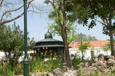 Luz Garden