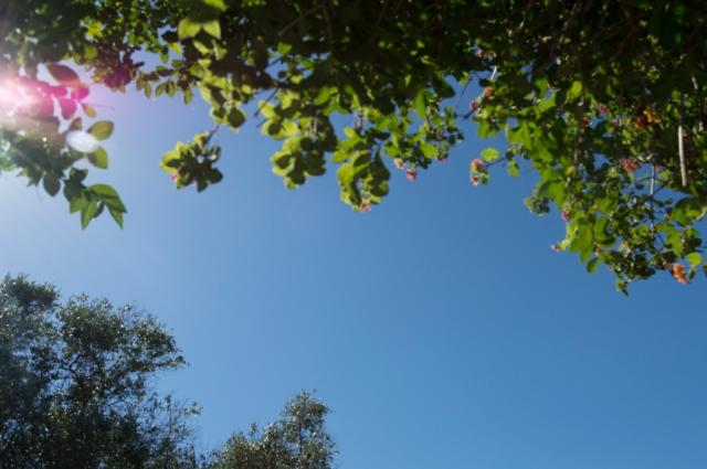 O dia e o sol
