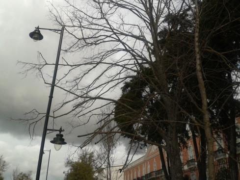 novembro (antes da chuva)