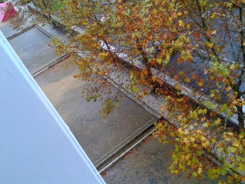 paisagem de outono (à janela)