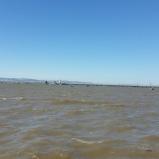O rio e a ponte Vasco da Gama
